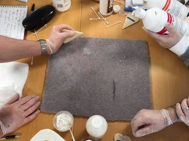 NCCA-Advanced-Spot-Stain-Removal-Course-Hands-On