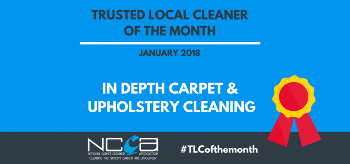 Trusted Local Cleaner for January - In Depth Carpet & Upholstery Cleaning