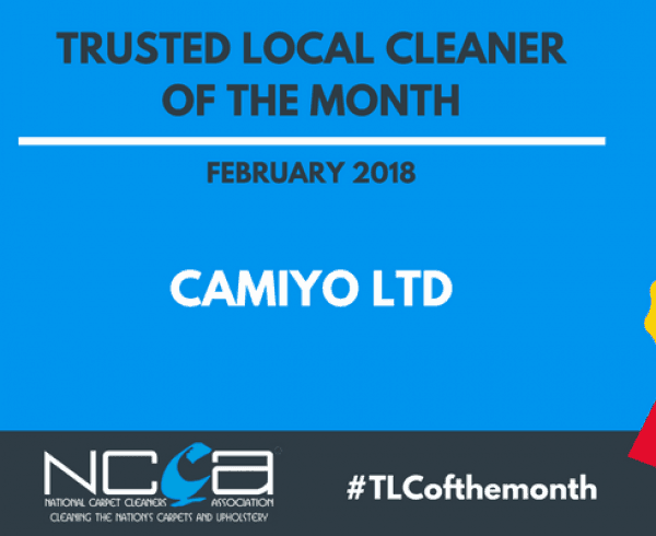 Trusted Local Cleaner of February