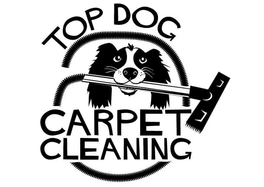 Find Trusted Local Cleaners Ncca National Carpet